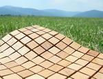 Mozaiki drewniane ETN!K DUNIN - zdjęcie 9